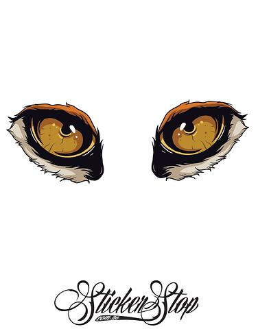 Lion Eyes Colour Stickers